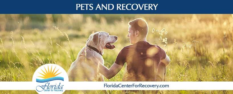 Pets and Recovery