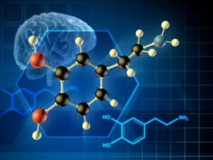 MORs stimulate the release of the neurotransmitter dopamine. This causes reinforcement of drug-taking behaviors.